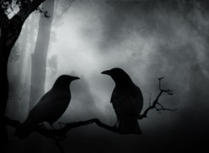 Dark Crows Couple