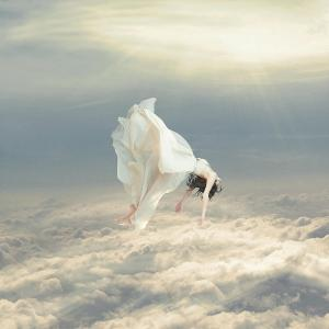 """Free Falling Dream"" by Richard Davis"
